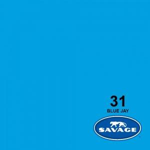 فون کاغذی Blue Jay